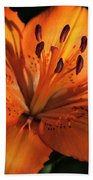 Sunkissed Lily Beach Towel