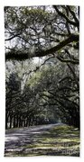 Sunlight And Shadows On Live Oaks Beach Towel