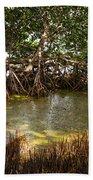 Sunlight In Mangrove Forest Beach Towel