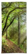 Sunlight On The Trail Beach Towel
