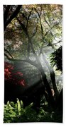 Sunlight Through The Tree In Misty Morning 1. Beach Towel