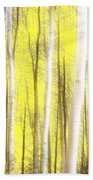 Sunlit Aspen Grove Beach Towel