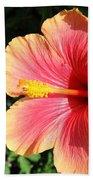 Sunlit Beauty Beach Sheet