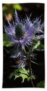 Sunlit Bloom Of Alpine Sea Holly Beach Towel