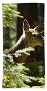 Sunlit Deer Friend Beach Towel