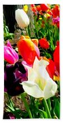 Sunlit Tulips Beach Towel