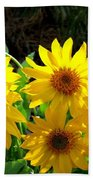 Sunlit Wild Sunflowers Beach Sheet
