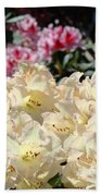 Sunlit Yellow Rhodies Art Print Creamy Rhododendrons Flowers Baslee Troutman Beach Towel