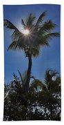 Sunny Palm Beach Towel