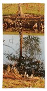 Sunny Pond Beach Sheet