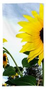 Sunny Slopes Beach Towel