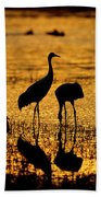 Sunrise At The Crane Pools Beach Towel
