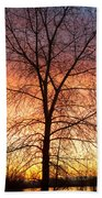Sunrise December 16th 2010 Beach Towel by James BO  Insogna