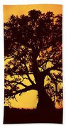 Sunrise Gum Beach Towel