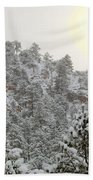 Sunrise In Snowstorm In The Pike National Forest Beach Towel