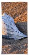 Sunrise Seashell Beach Towel