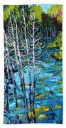 Sunrise Swamp Beach Towel