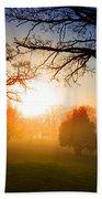 Sunrise Through Trees Beach Towel