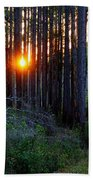 Sunset Along The Florida Trail - St.marks Beach Towel