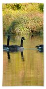 Sunset Goose Beach Towel