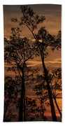 Sunset In The Pine Woods Beach Towel