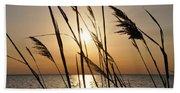 Sunset Through The Dune Grass Beach Towel