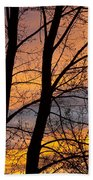 Sunset Through The Tree Silhouette Beach Towel