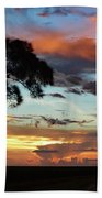 Sunset Tree Florida Beach Towel