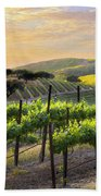 Sunset Vineyard Beach Towel by Sharon Foster