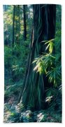 Sunshine In The Forest Beach Towel