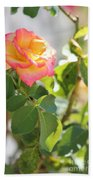 Sunshine Rose Beach Towel