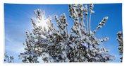 Sunshine Through Snow Covered Tree Beach Sheet