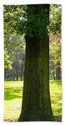 Sunshine Trees Forest Park Beach Towel