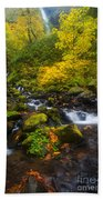 Surrounded By Fall Color Beach Towel