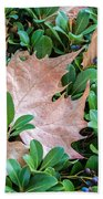 Surrounded Leaf Beach Towel