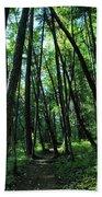 Susan Creek Indian Mound Trail Beach Towel