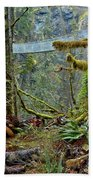 Suspended In The Rain Forest Beach Towel