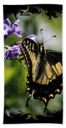 Swallowtail Butterfly 2 With Swirly Framing Beach Towel