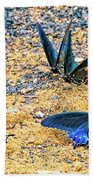 Swallowtail Butterfly Convention Beach Towel