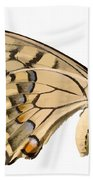 Swallowtail Butterfly Vector Isolated Beach Towel