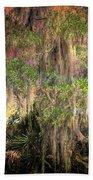 Swamp 2 Beach Towel
