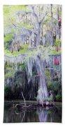 Swamp Colors Beach Towel