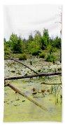 Swamp Habitat Beach Towel