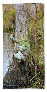 Swamp Monster Beach Towel