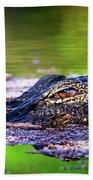 Swamp Patrol Beach Towel