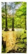 Swampland Dreams Beach Towel