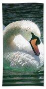 Swan Bow Beach Towel