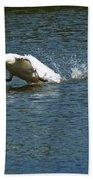 Swan Landing 2 Beach Towel