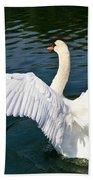Swan Moment Beach Towel