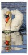 Swan Reflection Beach Towel
